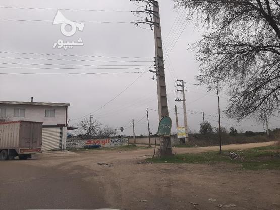 زمین مسکونی 510 توی بافت جاده دریا سوته  در گروه خرید و فروش املاک در مازندران در شیپور-عکس4