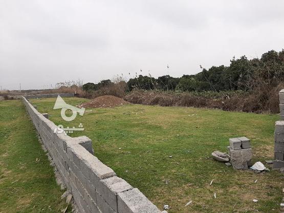 زمین مسکونی 510 توی بافت جاده دریا سوته  در گروه خرید و فروش املاک در مازندران در شیپور-عکس2