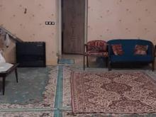 فروش تجاری و مغازه 450 مترو مسکونی  در باغستان در شیپور
