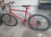 دوچرخه سالم باتخفیف عالی در شیپور-عکس کوچک