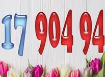 09121790494 در شیپور-عکس کوچک
