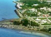 فروش زمین مسکونی 900 متری دید دریا و جنگل در نوشهر در شیپور-عکس کوچک