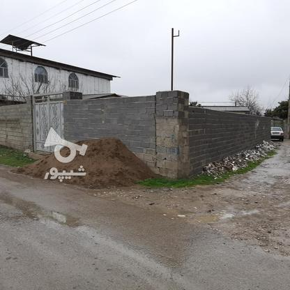 فروش زمین مسکونی 470 متری دونبش توی بافت در گروه خرید و فروش املاک در مازندران در شیپور-عکس7