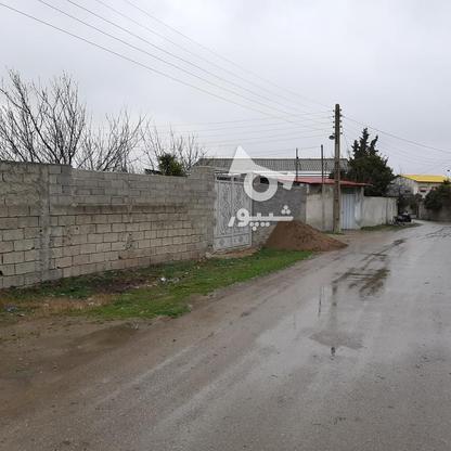 فروش زمین مسکونی 470 متری دونبش توی بافت در گروه خرید و فروش املاک در مازندران در شیپور-عکس4