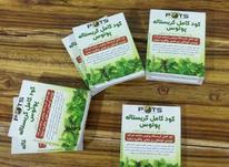 کودکامل برای تمام گیاهان در شیپور-عکس کوچک