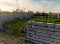 باغچه شهرکی261 متر درجاده بابل بهنمیر در شیپور-عکس کوچک