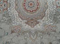 فرش12متری700شانه در شیپور-عکس کوچک