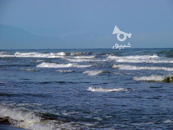 قواره اول دریا 600متر زمین در منطقه ایزدشهر در گروه خرید و فروش املاک در مازندران در شیپور-عکس1