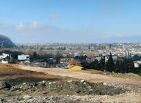 فروش زمین مسکونی 5500 متر در نوشهر در شیپور-عکس کوچک