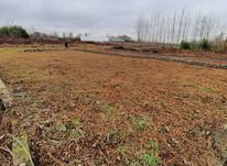 فروش زمین 250 متر در نخجیرکلایه در شیپور-عکس کوچک