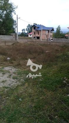 زمین با بهترین شرایط در گروه خرید و فروش املاک در مازندران در شیپور-عکس3