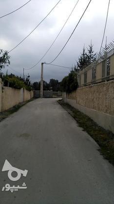 زمین با بهترین شرایط در گروه خرید و فروش املاک در مازندران در شیپور-عکس4
