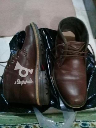کفش مردانه در گروه خرید و فروش لوازم شخصی در گیلان در شیپور-عکس1