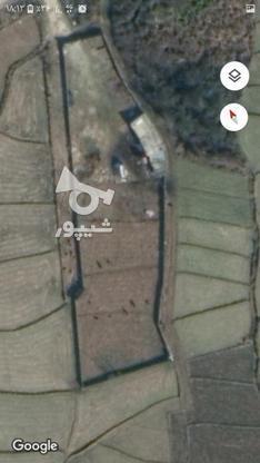 زمین کشاورزی بهر اصلی کمربندی  در گروه خرید و فروش املاک در مازندران در شیپور-عکس2