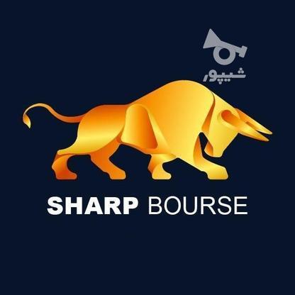 پذیرش طراحی لوگو و پوستر در گروه خرید و فروش خدمات و کسب و کار در اردبیل در شیپور-عکس1