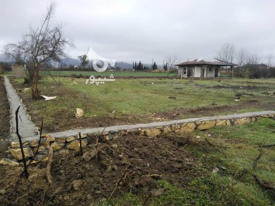 زمین با موقعیت عالی برای خانه ویلایی و باغچه در گروه خرید و فروش املاک در مازندران در شیپور-عکس4