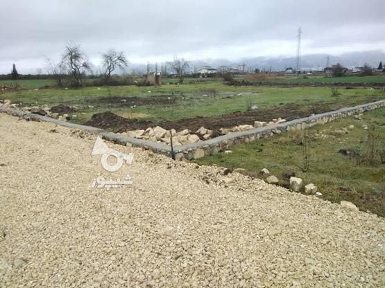 زمین با موقعیت عالی برای خانه ویلایی و باغچه در گروه خرید و فروش املاک در مازندران در شیپور-عکس5