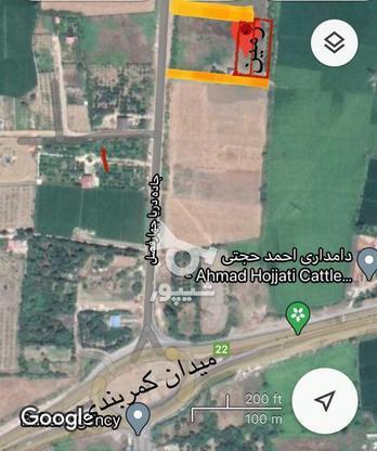 زمین با موقعیت عالی برای خانه ویلایی و باغچه در گروه خرید و فروش املاک در مازندران در شیپور-عکس7