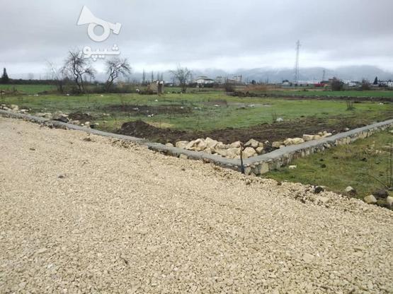زمین با موقعیت عالی برای خانه ویلایی و باغچه در گروه خرید و فروش املاک در مازندران در شیپور-عکس3