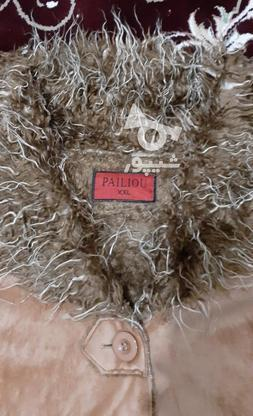 پالتوی رایگان در گروه خرید و فروش لوازم شخصی در گلستان در شیپور-عکس2