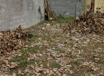 فروش زمین مسکونی 238 متر در جاده رشت به سنگر در شیپور-عکس کوچک