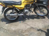 احسان شکاری زرد قناری خیلی تمیز  در شیپور-عکس کوچک