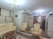 اجاره آپارتمان 56 متر در هاشمی در شیپور-عکس کوچک