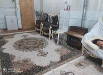 دوتخته فرش 9متری در شیپور-عکس کوچک
