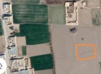 فروش زمین.  1000 متر  در شیپور-عکس کوچک