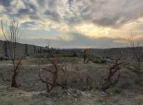 زمین دوبر و باغچه 300 متر در رباط کریم در شیپور-عکس کوچک