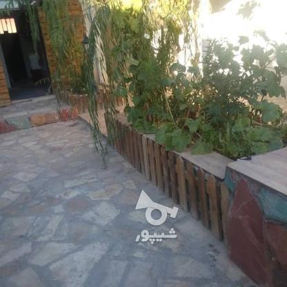 فروش زمین کشاورزی 300 متر در شهریار در گروه خرید و فروش املاک در تهران در شیپور-عکس3