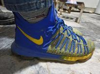 کفش نایک اصل در شیپور-عکس کوچک