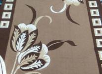 گلیم فرش فروشی نو است  در شیپور-عکس کوچک