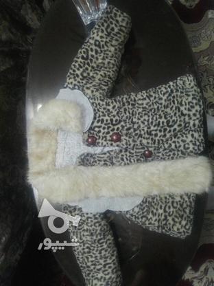 پالتو مناسب برای سنین یک سال تا 3سال در گروه خرید و فروش لوازم شخصی در تهران در شیپور-عکس2