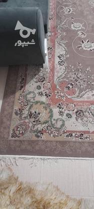یک تخته فرش 12 متری در گروه خرید و فروش لوازم خانگی در اصفهان در شیپور-عکس2