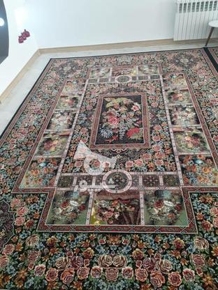فرش  درحدنو عالی در گروه خرید و فروش لوازم خانگی در گیلان در شیپور-عکس1
