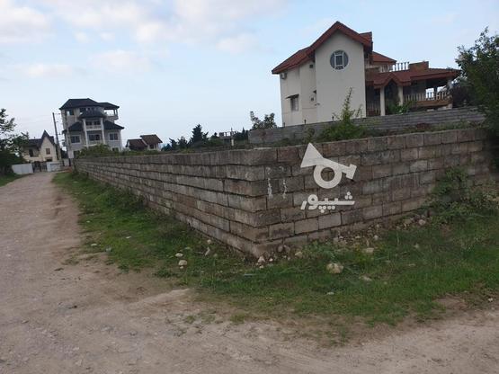 زمین سند دار و پروانه ساخت سیاهرودسر محموداباد310 متر  در گروه خرید و فروش املاک در مازندران در شیپور-عکس1