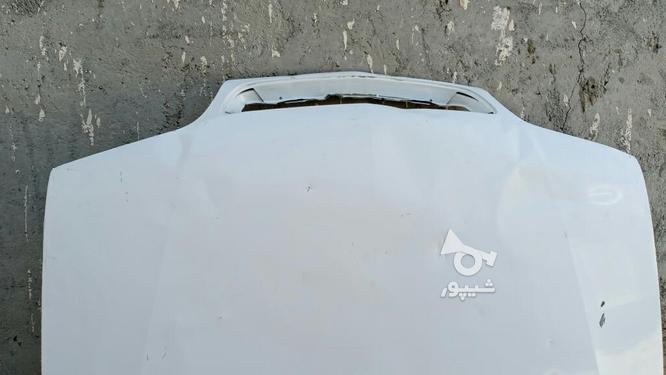 کاپوت زانتیا بدون رنگ سفید  در گروه خرید و فروش وسایل نقلیه در سیستان و بلوچستان در شیپور-عکس3