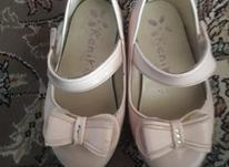 کفش سایز 23 در شیپور-عکس کوچک
