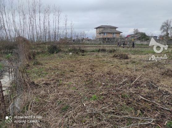 284 متر زمین سند دار با پروانه ساخت.رودسر- روستای دوستکوه در گروه خرید و فروش املاک در گیلان در شیپور-عکس5