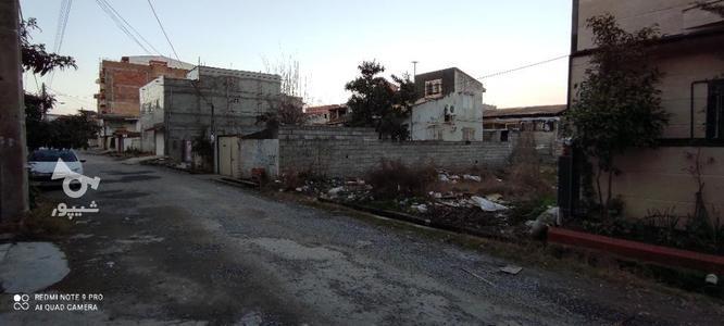 200 متر زمین محمود آباد در گروه خرید و فروش املاک در مازندران در شیپور-عکس1