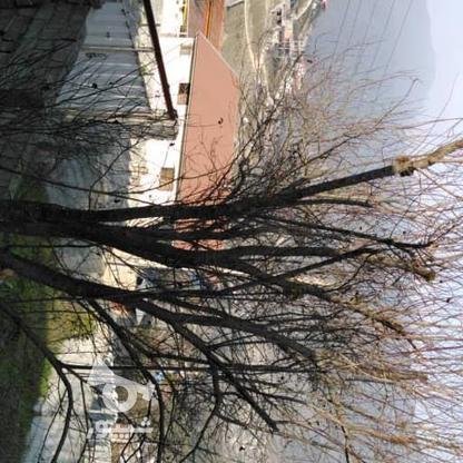 فروش ویلا 250 متر در آمل در گروه خرید و فروش املاک در مازندران در شیپور-عکس1