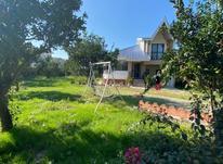 فروش ویلا باغ400 متری در منطقه جنگلی نور در شیپور-عکس کوچک