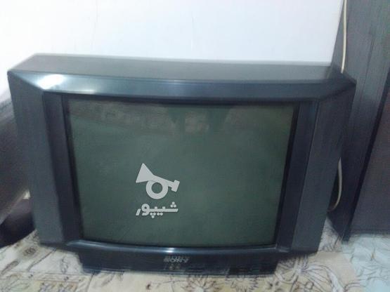 تلویزیون سونی 21 صدا دارد تصویرو کنترل ندارد  در گروه خرید و فروش لوازم الکترونیکی در خراسان رضوی در شیپور-عکس1