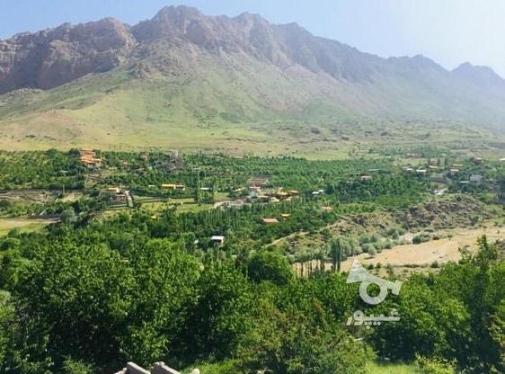 زمین مسکونی 300 متی در لاریجان امیری امل  در گروه خرید و فروش املاک در مازندران در شیپور-عکس1