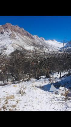 زمین مسکونی 300 متی در لاریجان امیری امل  در گروه خرید و فروش املاک در مازندران در شیپور-عکس3