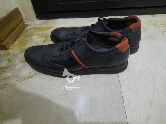 کفش چرم اصل  در گروه خرید و فروش لوازم شخصی در فارس در شیپور-عکس1