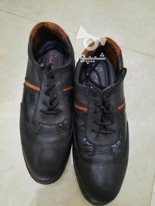 کفش چرم اصل  در گروه خرید و فروش لوازم شخصی در فارس در شیپور-عکس2