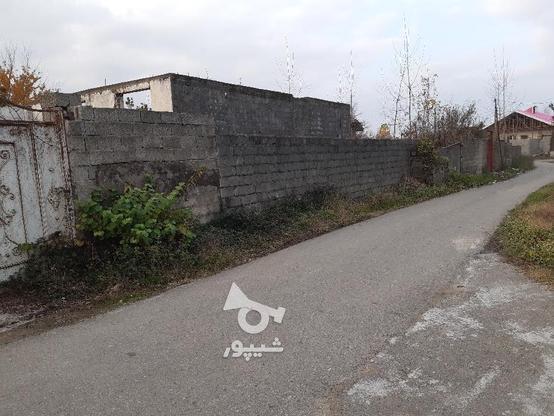 زمین مسکونی 423 متری و خانه نیمه ساز  در گروه خرید و فروش املاک در گیلان در شیپور-عکس6