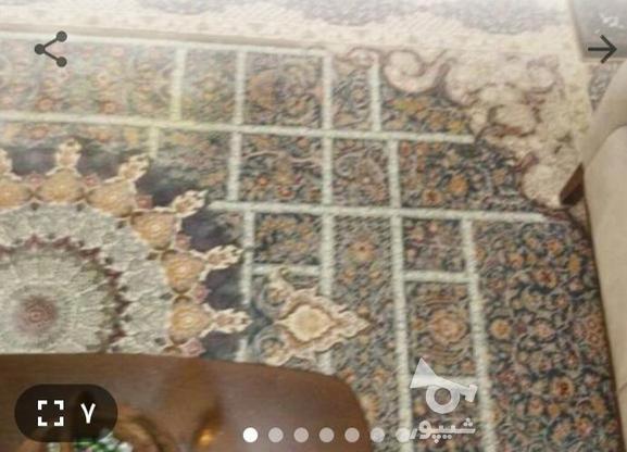 دو تخته فرش نو نو9 متری شرکت نیاوران 1200 شانه تراکم 3600 در گروه خرید و فروش لوازم خانگی در تهران در شیپور-عکس2